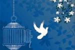 آزادی ۵۵ زندانی جرائم غیرعمد در آذربایجان شرقی